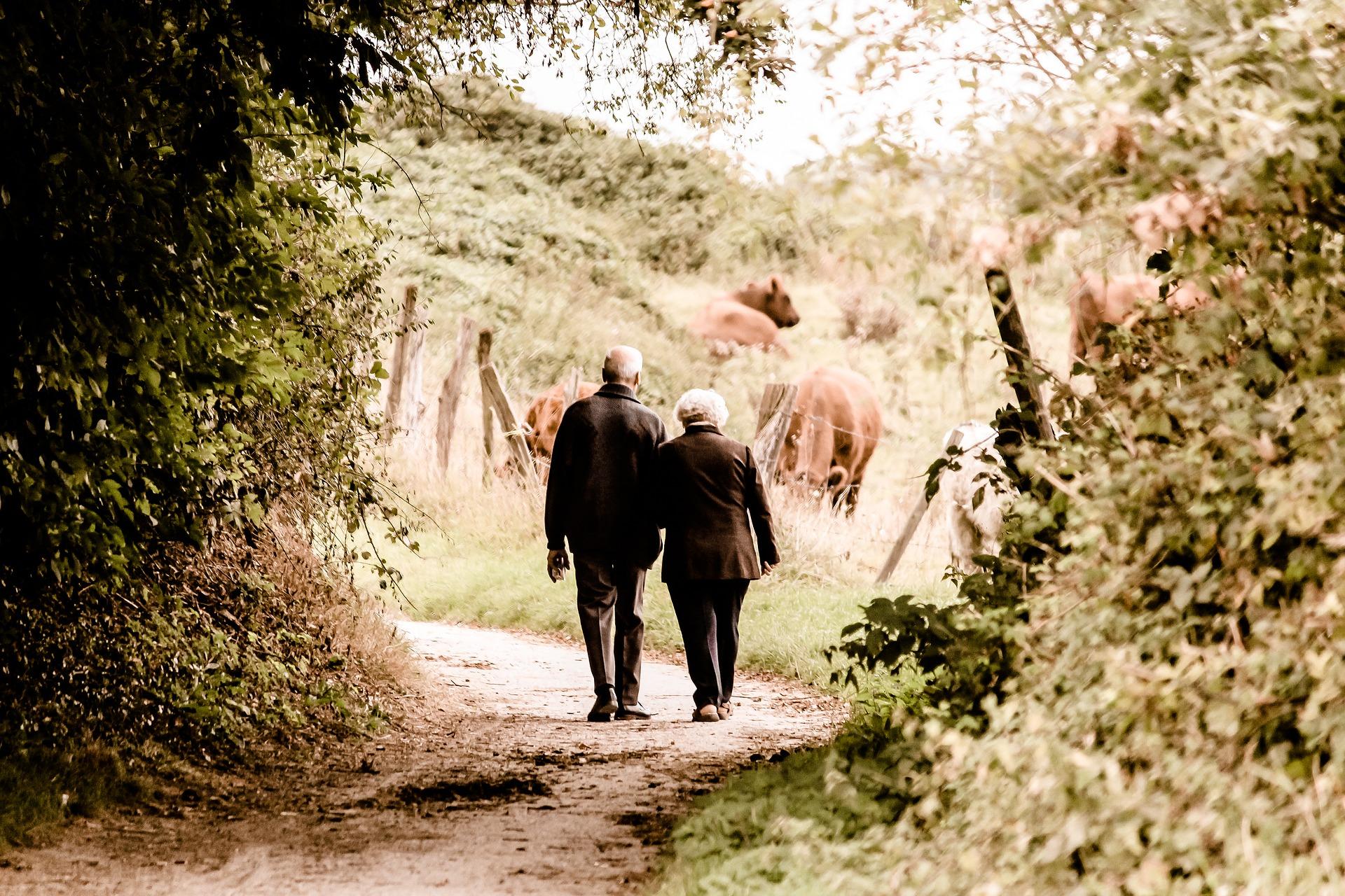 Couple âgé qui se promène dans la campagne